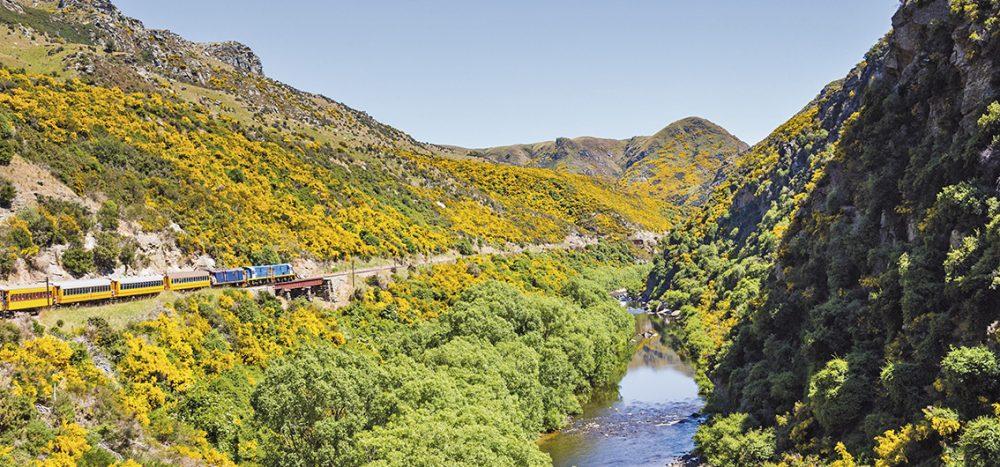 Bild für Neuseeland: Die schönsten Zugstrecken am Ende der Welt