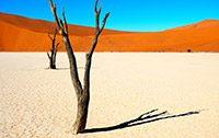 Bild für Entdeckungsreise Namibia