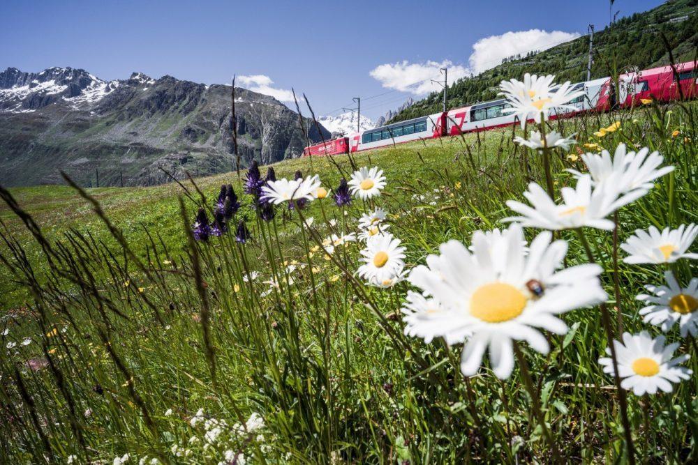 Glacier Express am Oberalppass