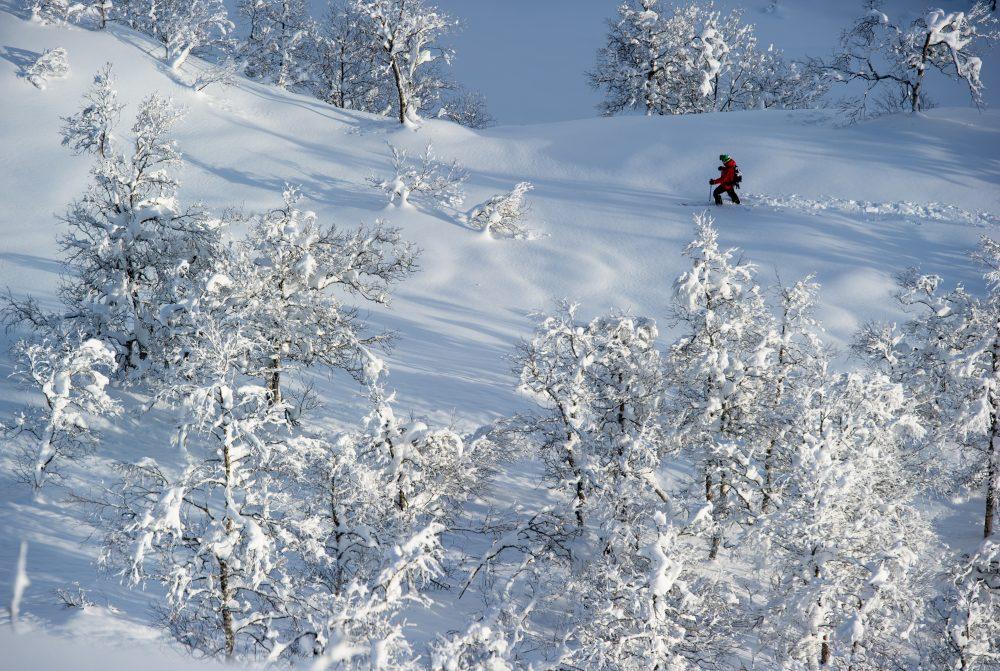 Winterlandschaft (c) Sverre Hjørnevik