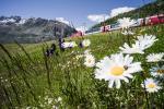 Glacier Express im Sommer (C)MGB