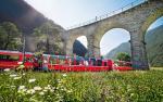 Bernina Express / Frühling